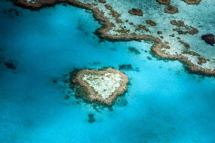 見たら幸せになれると言われているハート型の島「ハートリーフ」。ハネムーンに大人気のスポットとなっています。