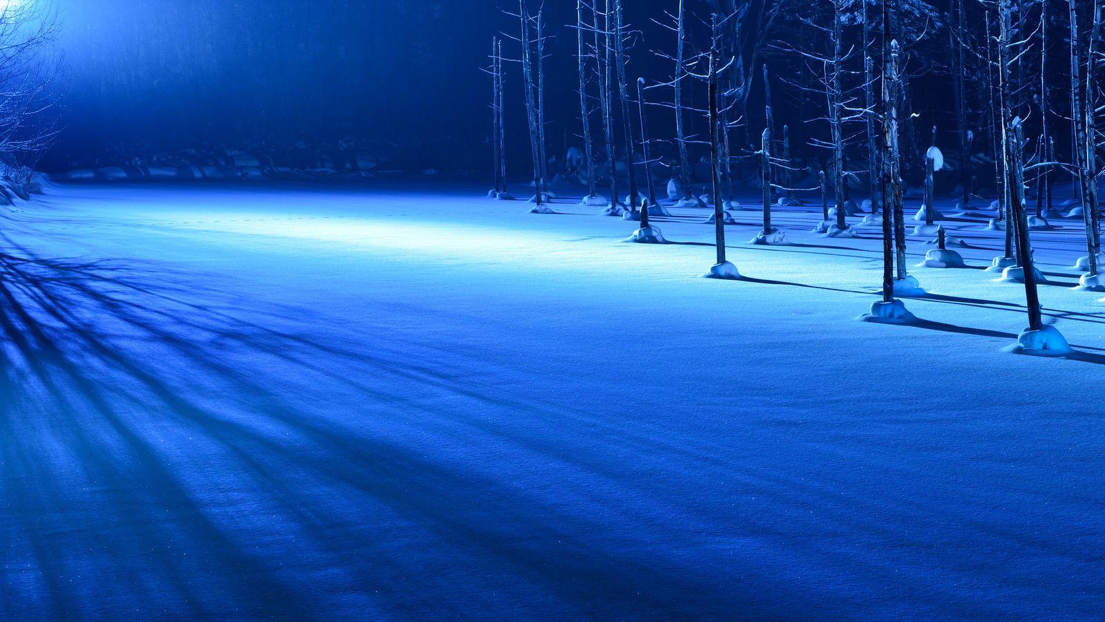 Macの壁紙にもなった 北海道 青い池 は誰もが息をのむ美しさ Retrip リトリップ