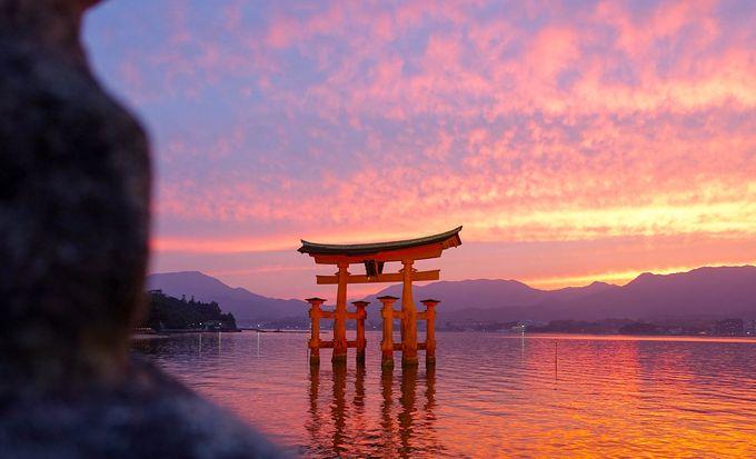 【死ぬまでに1度は行きたい!】世界文化遺産 嚴島神社・宮島を楽しみ10の魅力を発見!