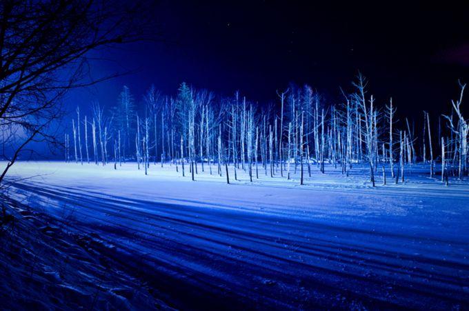 絵の具をそのまま水に溶かしたようなその美しコバルトブルーは、純白な雪と最高にマッチします。まさに北海道の冬ならではの絶景がそこに広がります。