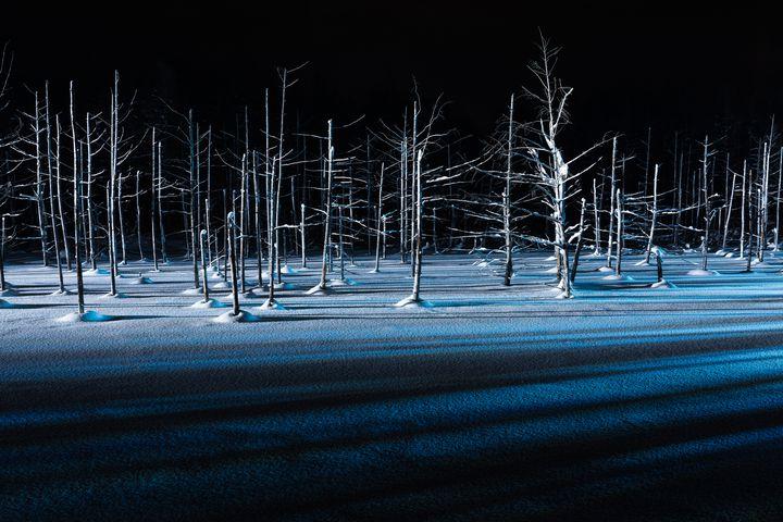 冬しか見られない特別な絶景!北海道で行くべき至極の絶景スポット10選