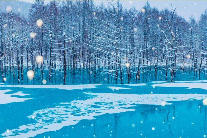 冬しか見られない特別な絶景!北海道で行くべき至極の観光