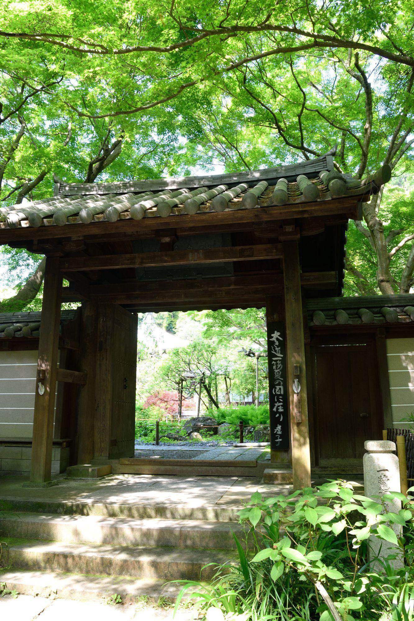 観光で訪れたい人気スポット!鎌倉のおすすめ神社・寺ランキングTOP15 13枚目の画像
