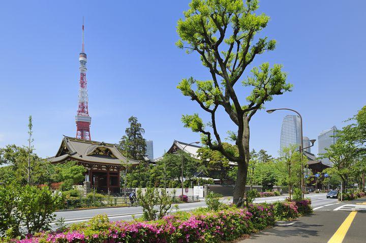 今年の初詣はどこに行く?東京のおすすめ神社・寺ランキングTOP15