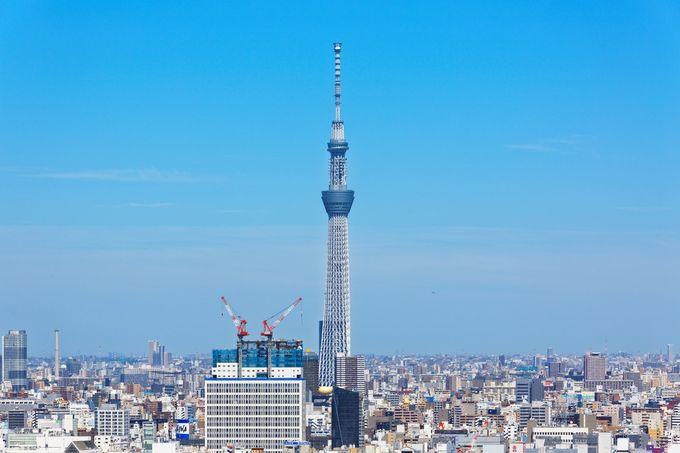 日本一周者が選ぶ!東京で行くべき観光スポット厳選25選