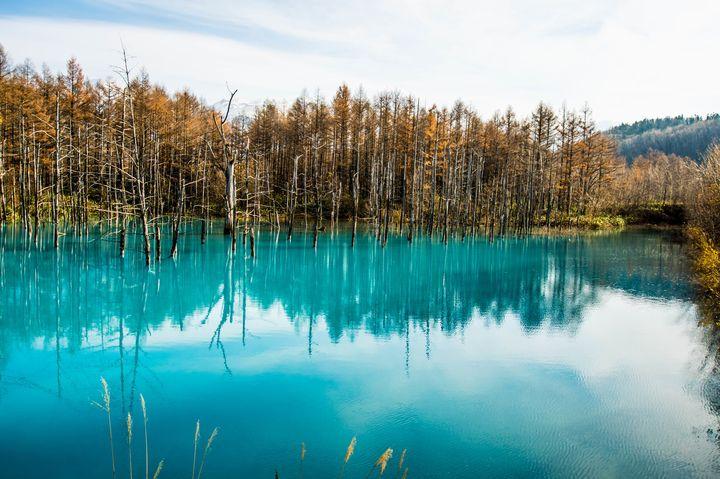 日本一周者が選ぶ!北海道で行くべき観光スポット厳選20選