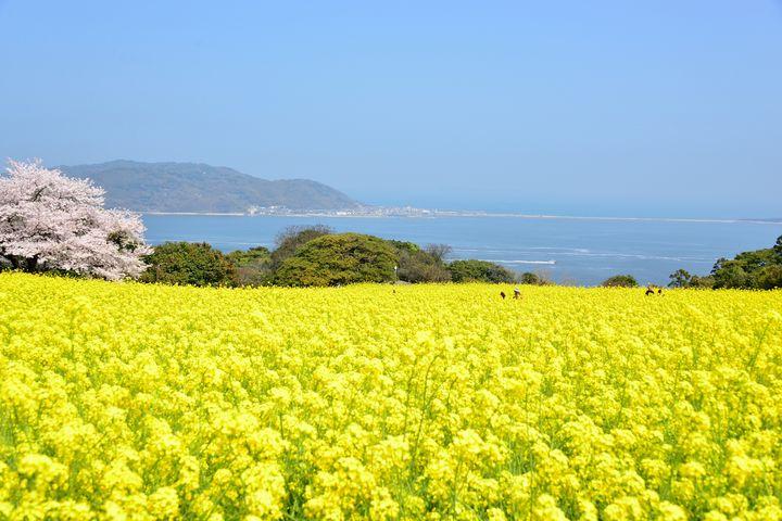 日本一周者が選ぶ!福岡で行くべき観光スポット厳選20選
