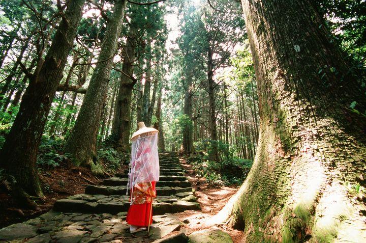 日本一周者が選ぶ!和歌山で行くべき観光スポット厳選15選