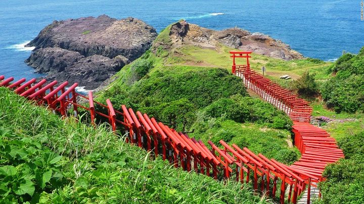 まるで伏見稲荷の景色!SNSで話題の秘境「元乃隅稲成神社」とは
