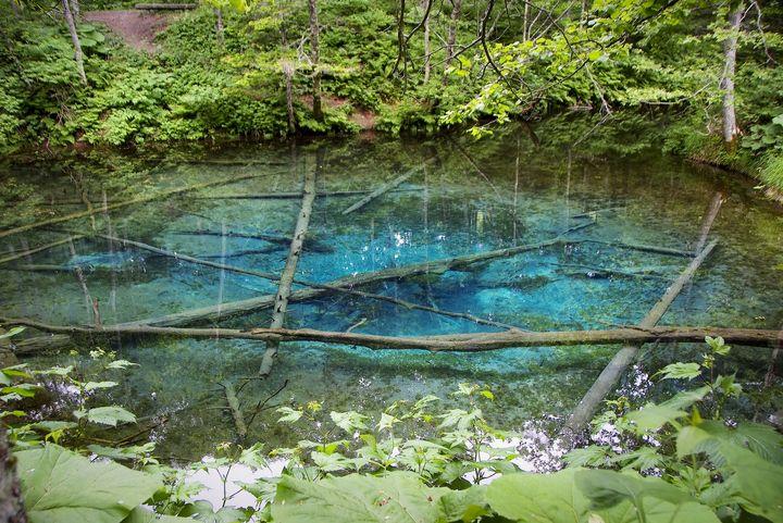 """死ぬまでに一度は見たい!思わず感動する日本国内の""""神秘的な池""""5選"""