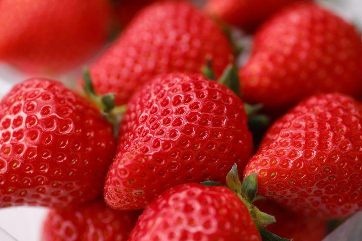 【終了】甘い苺に埋もれたい!贅沢資生堂パーラーで「贅沢な苺フェア」開催