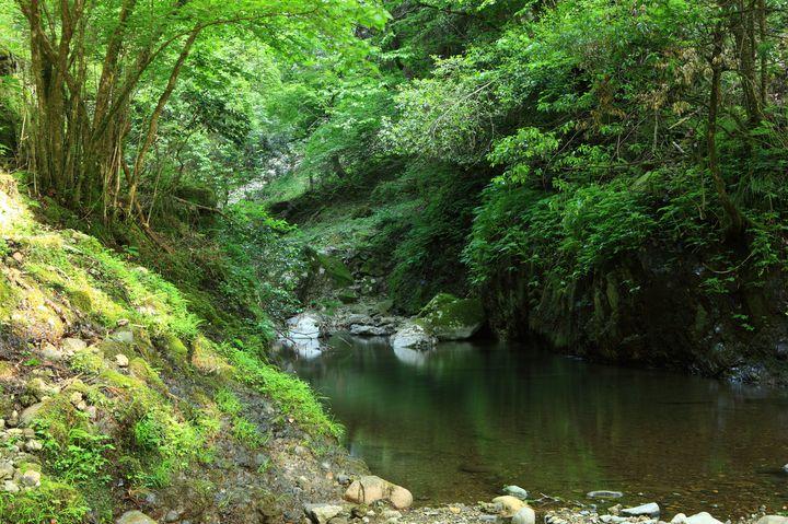 """森林浴を楽しみたい!兵庫でおすすめの""""登山・ハイキングスポット""""15選"""