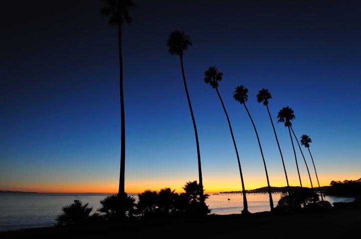 千葉にいながらカリフォルニア気分!車好きの聖地『千葉フォルニア』とは?