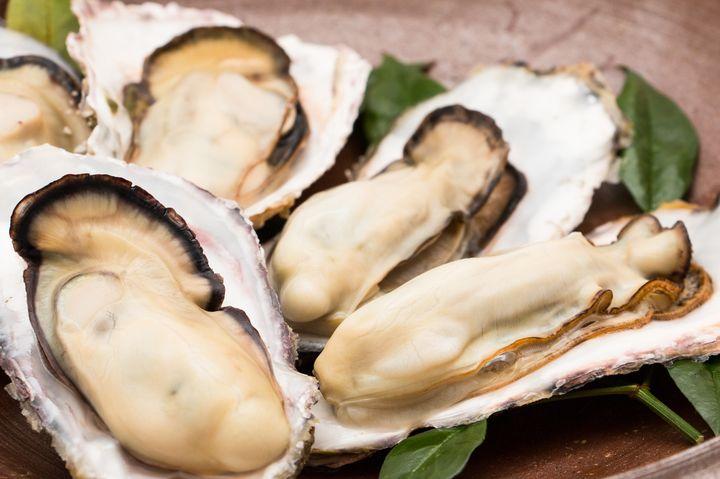 【終了】旬の生牡蠣が半額に!超人気のオイスターバー「オストレア」で半額リレー開催