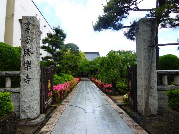 新潟ふらっと散歩「勝楽寺」港町の歴史が残るお寺