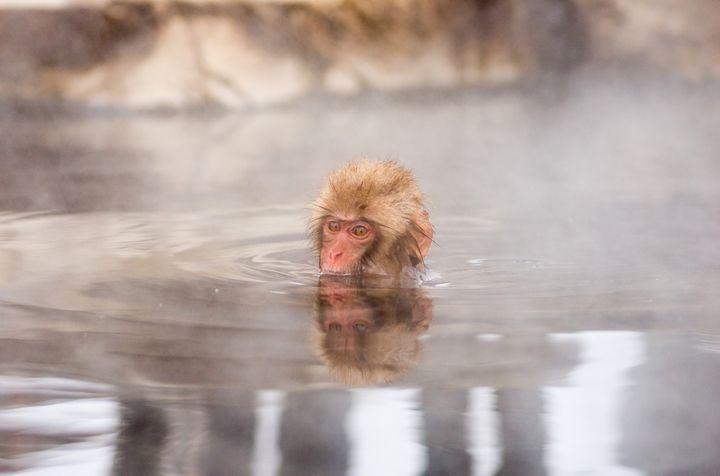 浸かるだけでお肌すべすべ!日本全国のおすすめ「美肌の湯」ランキングBEST10