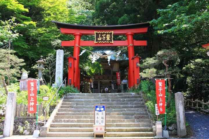 """パワースポット巡りするならココ!栃木のおすすめ""""お寺・神社""""7選"""
