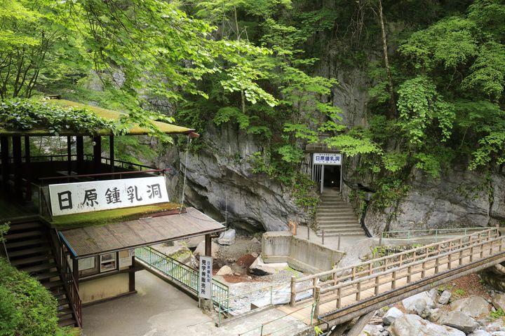 関東随一の鍾乳洞が東京に!神秘的な雰囲気を醸す「日原鍾乳洞」