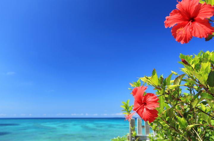 冬の旅行に「沖縄」を選ぶべきではない5つの理由