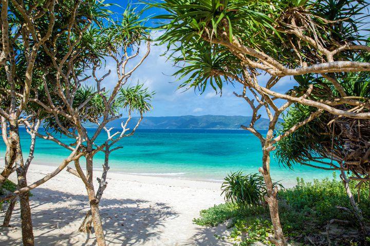 まだまだ夏が恋しいあなたへ!「東洋のガラパゴス」奄美大島の絶景スポット10選