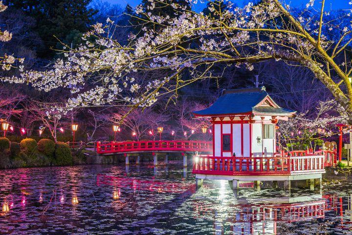 【2017年】穴場スポットも紹介!千葉県のおすすめお花見スポット7選