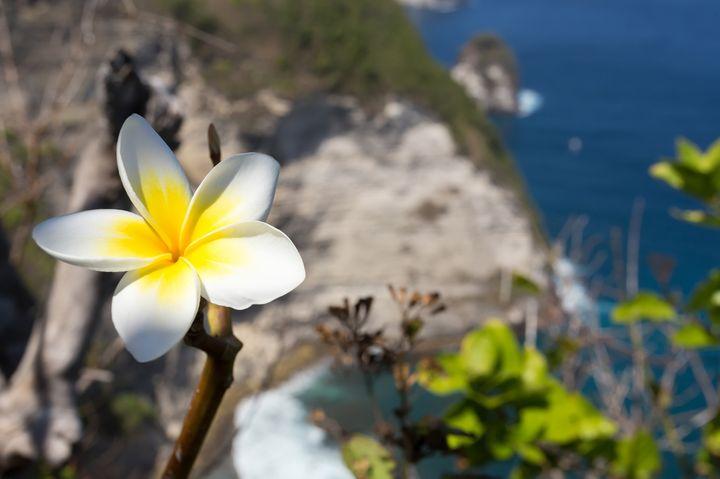 想像を絶する美しさ!バリ島からたった1時間の秘境離島「ペニダ島」とは
