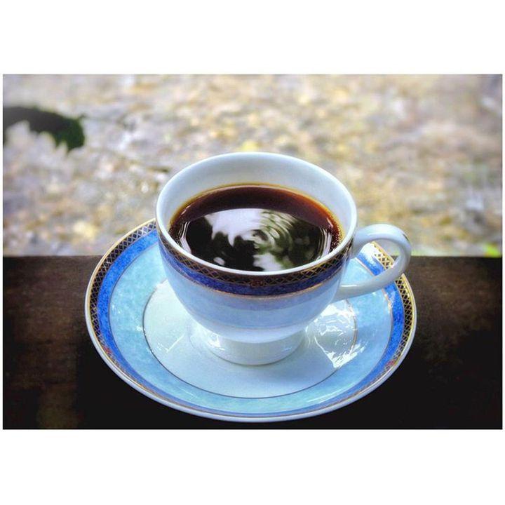 至福の一杯に出会える!鹿児島の「コーヒー専門店」6選