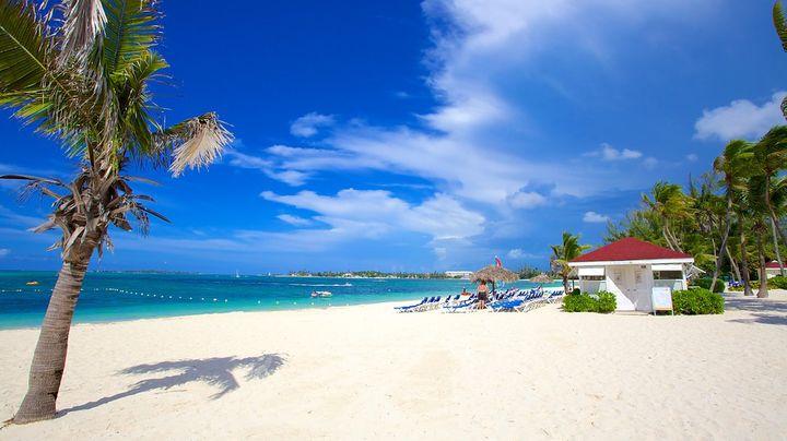 白い砂浜と青い海が美しい最高の人気ビーチ