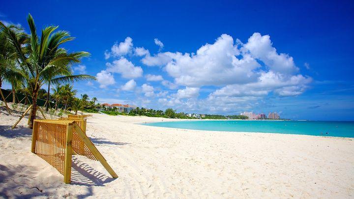 リラックスして大海原を満喫できる至極のビーチ