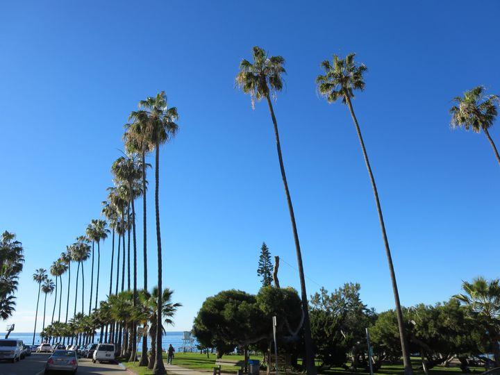 異国情緒漂う「サンディエゴ」おすすめの人気観光スポット20選   RETRIP[リトリップ]