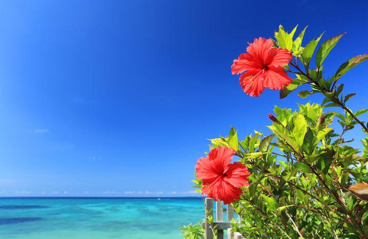 沖縄の離島をまとめてみました。あなたを癒してくれる美しい11の島々。