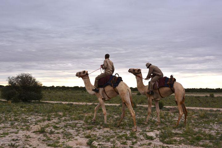 旅行すれば村おこしや環境保護になる!ボツワナでするエシカルな旅まとめ
