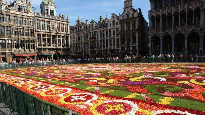 【終了】今年の夏はベルギーへ!日本がテーマの「ベルギーフラワーカーペット」が開催
