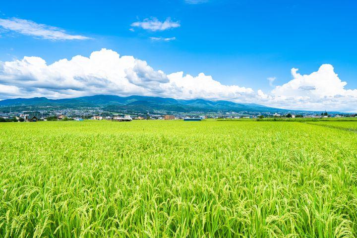 長野県が「最高の県」であることを認めざるを得ない8つの理由