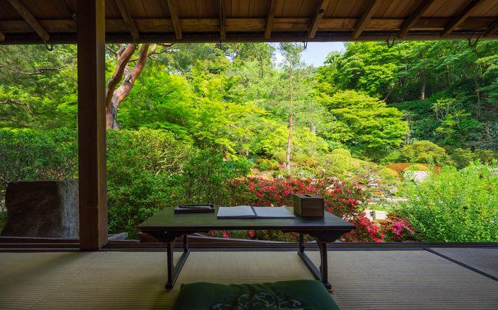 京都でゆるりとお寺カフェ。日本庭園を眺めながらお茶できる京都のお寺7選