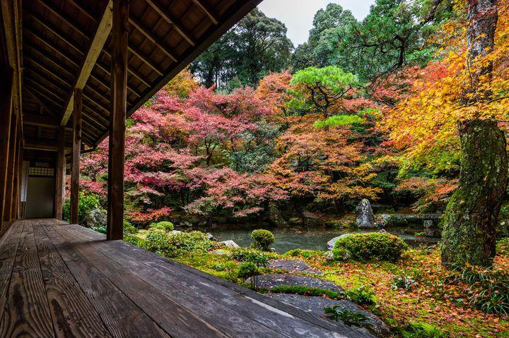 ここがあのロケ地!「そうだ京都、行こう。」のCMに使われた寺院10選