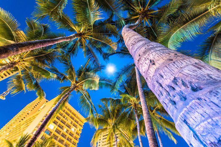 ハワイのばらまき土産は、ABCストアが超安い!大量買いしたいお土産まとめ