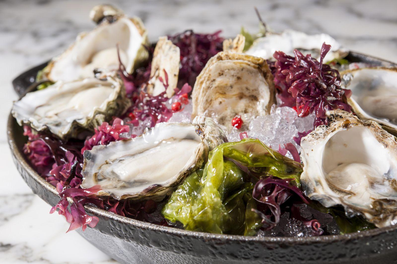 そんなダニエル・ブールー氏のレストラン「DB BISTRO & OYSTER BAR」では、自家製シャルキュトリ、ハンドカットのタルタルステーキ、などフランスのビストロの人気料理を食べられるほか、最大の特徴として、店内には見るだけでも興奮してしまうようなゴージャスなオイスターバーが設置されており、太平洋・大西洋の牡蠣、ボストンロブスター、アラスカキングクラブなど、最高のシーフードを楽しむことができます。