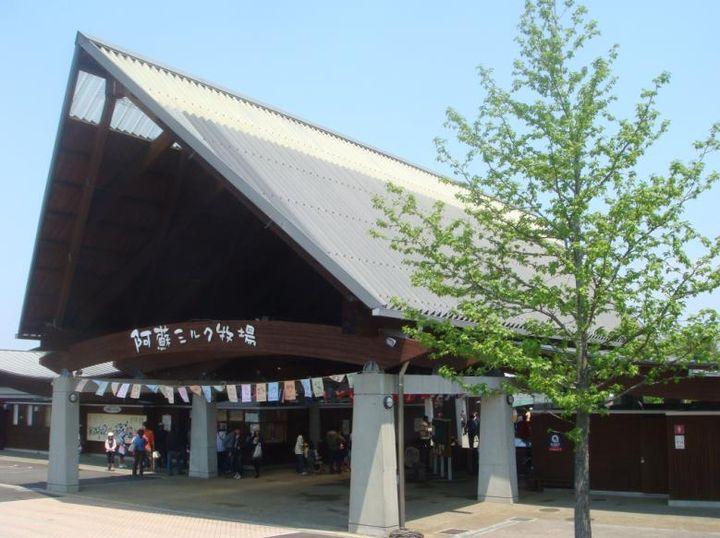 熊本の観光名所!らくのうマザーズ阿蘇ミルク牧場の楽しみ方5選!