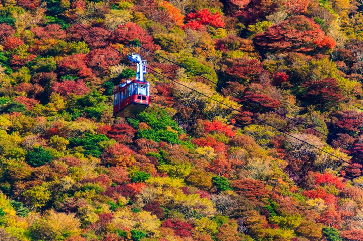"""空中散歩を楽しもう!日本全国の美しすぎる""""絶景ロープウェイ""""7選"""