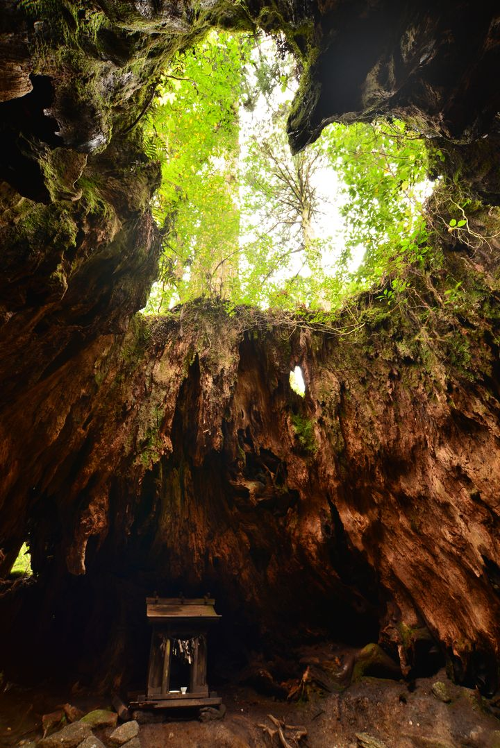 《鹿児島》美しき日本を再発見!鹿児島のフォトジェニックな絶景スポット5選