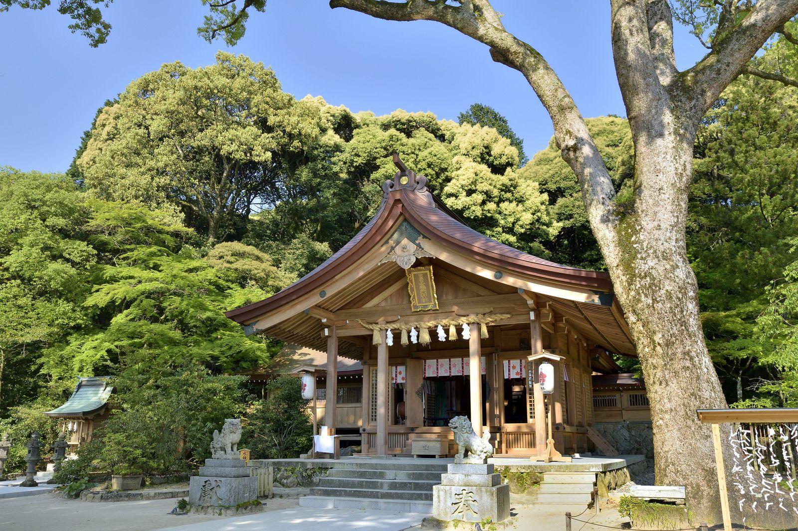 神社 お守り 竈門