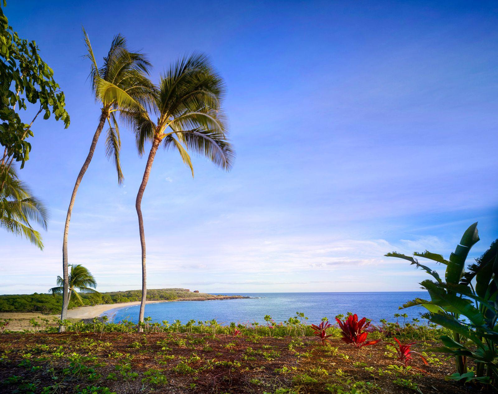 まるで地上の楽園!ホテルライフも素敵なハワイ・ラナイ島の魅力とは