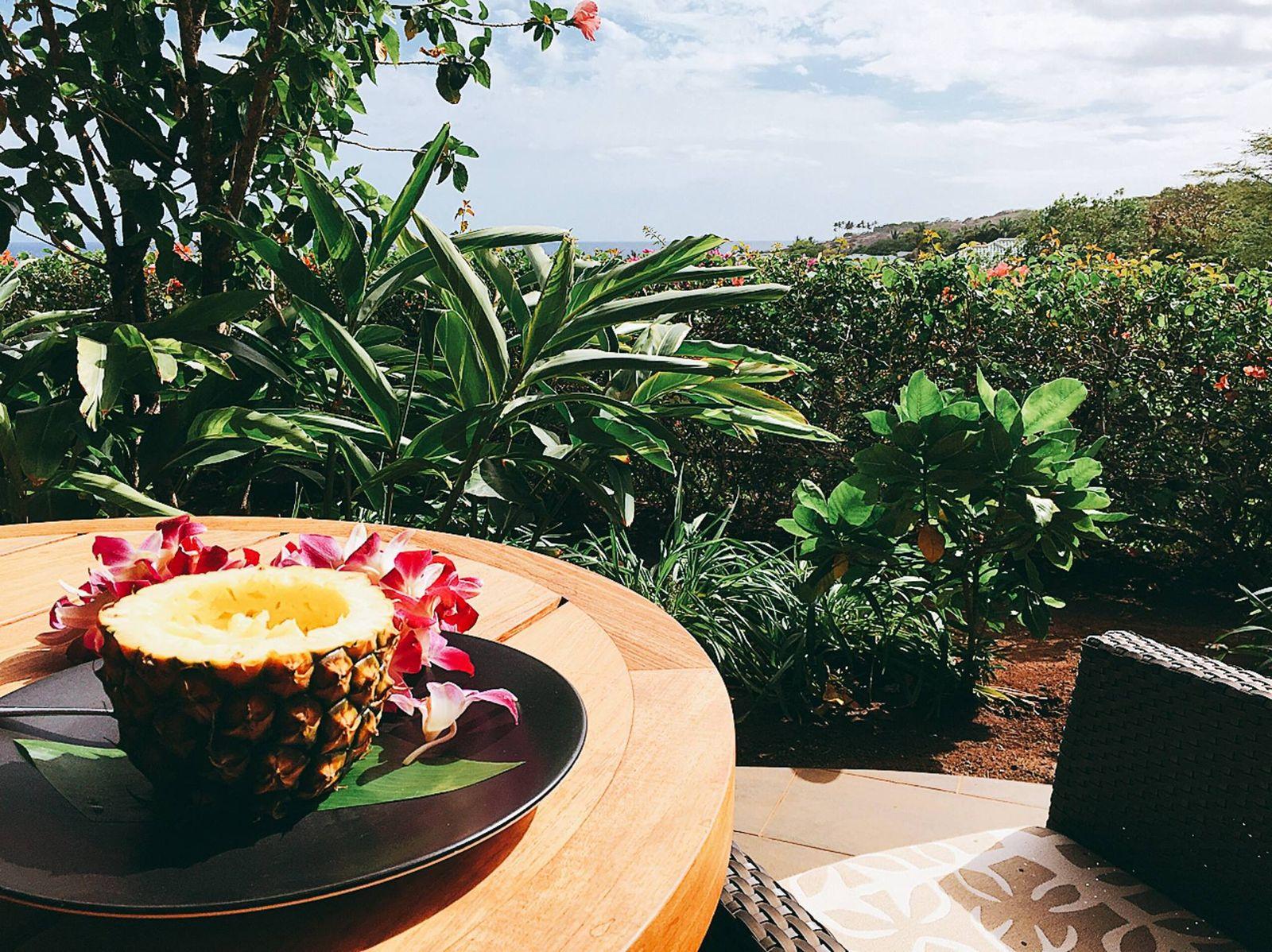 いかがでしたか?地上の楽園、という表現がぴったりのハワイ・ラナイ島に、皆さんも「有休ハワイ」しに行ってみてくださいね。