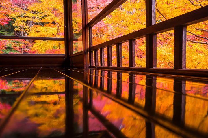 秋の旅行やお出かけに!日本国内の秋限定&今話題の絶景スポット15選