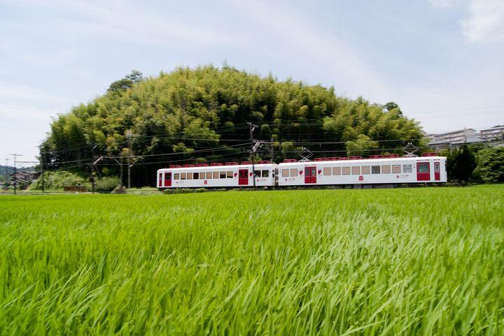 Instagramに載せたい!和歌山県の「いちご電車」でレトロな旅に出よう