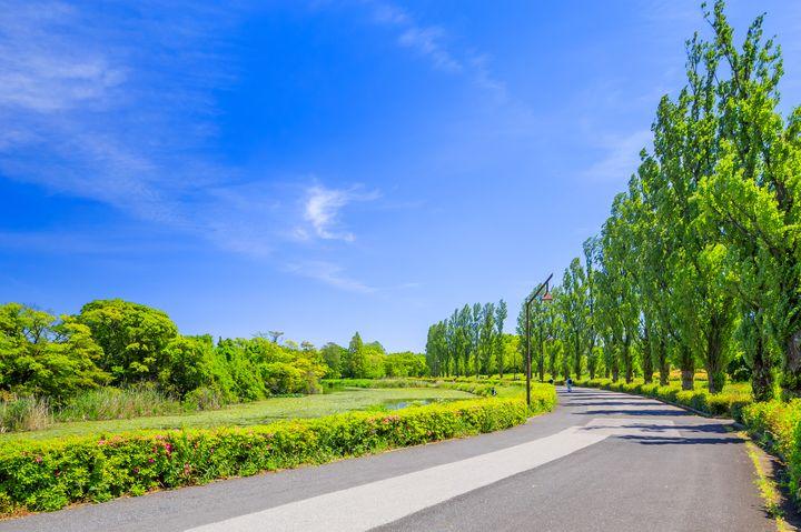 忙しい都会人にオススメ!心が落ち着く都内の美しい公園12選