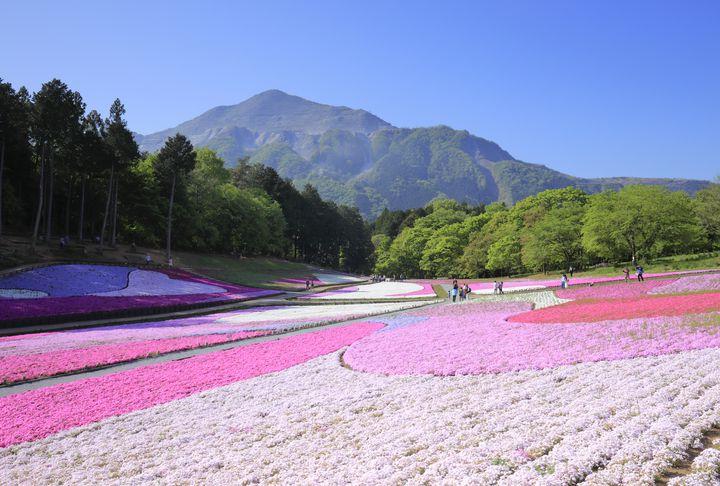 まだ東京でデートしてるの?絶対に満足する埼玉のおすすめデートスポットTOP10
