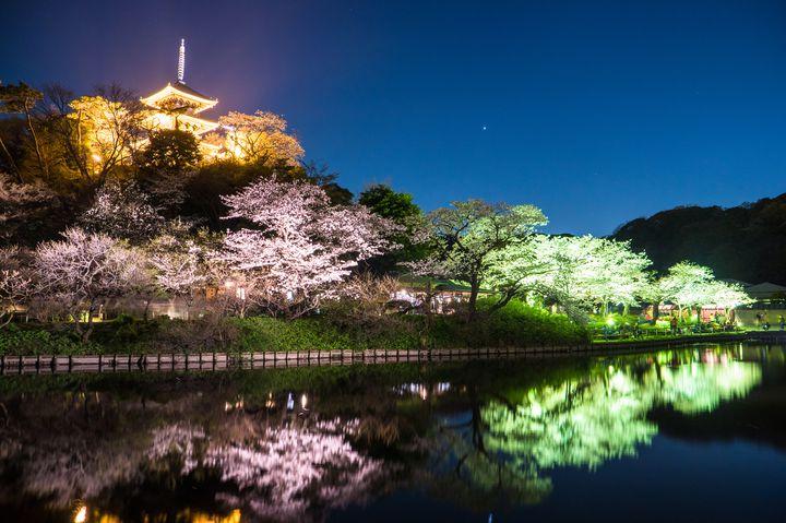 """おでかけ好きな2人へ!""""春の横浜デート""""でしたいこと&行きたいスポットまとめ"""