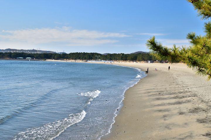 今度みんなで海行きたいね!友人と行く神奈川のおすすめ海岸ドライブプラン